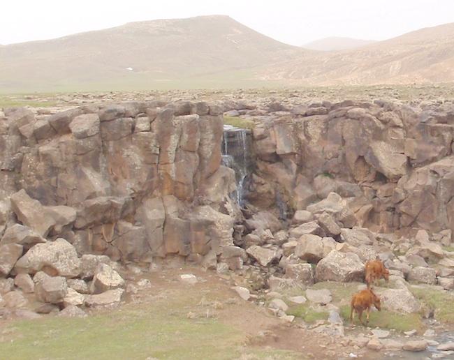 モロッコ 牛と泉