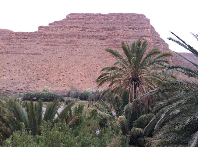 モロッコ 荒野のオアシス
