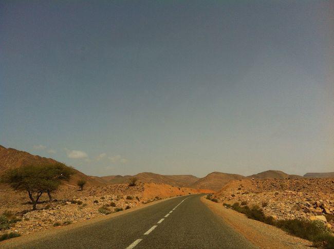 ドライブの景色