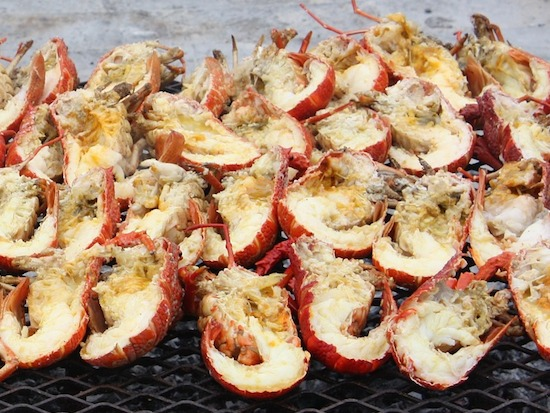 lobster-grill